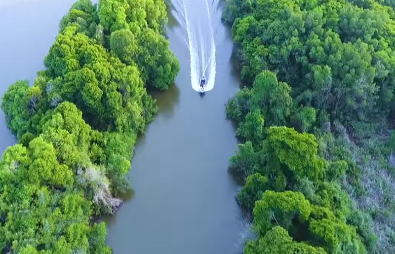 muthurajawela wetland