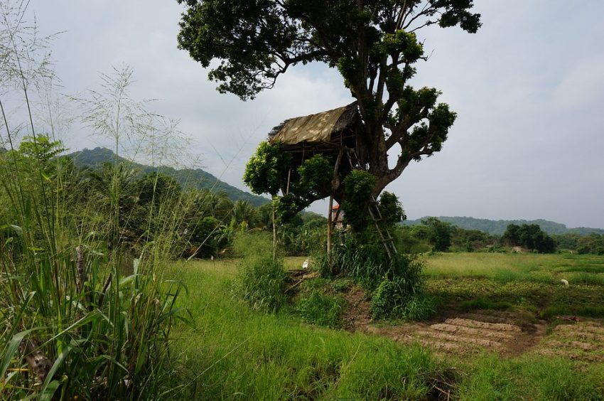Nedigama-villa, hanguranketha