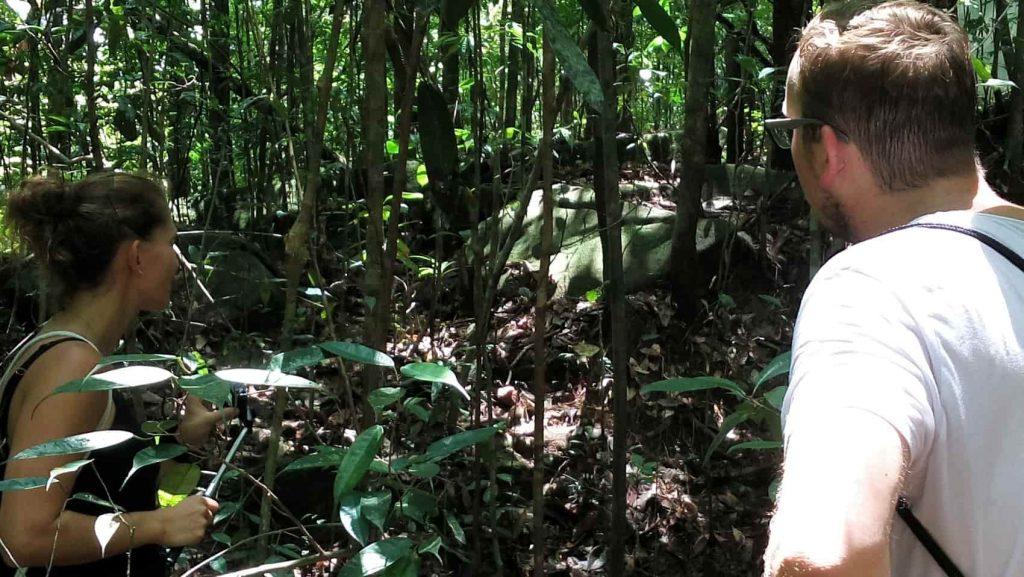 jungle trek kitulgala