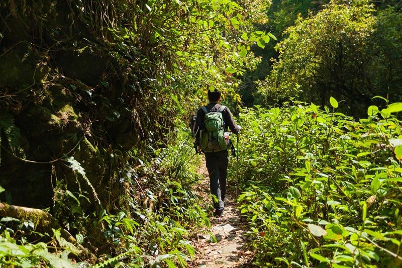 A Local's guide to Sri Lanka