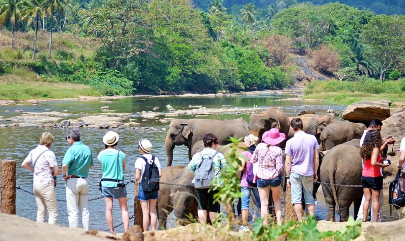 Places to visit in Sri Lanka within one day, Sri Lanka Adventure Tour