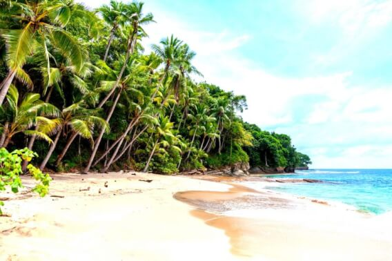 First time in Sri Lanka, What to do and where to stay in Sri Lanka?