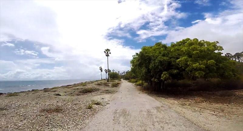 Sri Lanka's magnificent Delft island