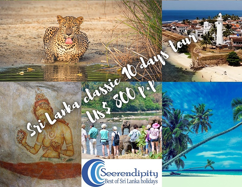 Sri Lanka classic 10 days tour, COLOMBO VACATION PACKAGES, Colombo tour package, places to visit colombo vacation package, how to plan colombo vacation packages, the cost of colombo vacation packages, 10 days colombo vacation packages