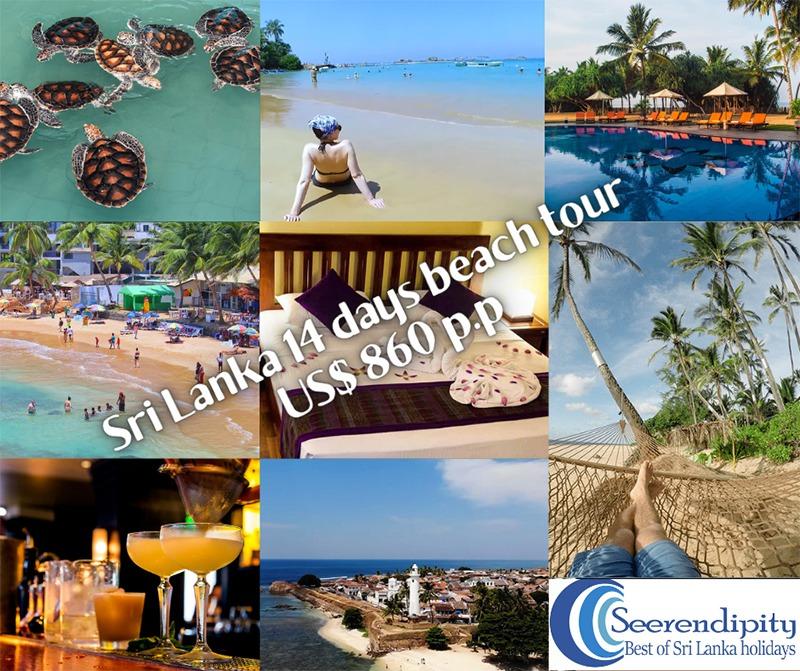 Sri Lanka beach tour, Sri Lanka beach holiday, 14 days Sri Lanka beach holiday, Hikkaduwa beach holiday, 14 days beach tour, Sri Lanka beach tour hikkaduwa, beach tour package sri lanka, beach holiday sri lanka, sri lanka beach tour