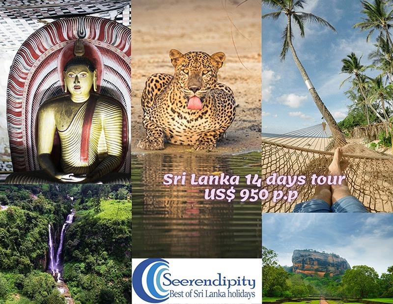 Places to visit on 14 days sri lanka tour, sri lanka 14 days tour, 14 days sri lanka trip