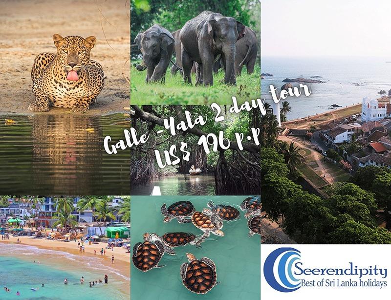 Galle 2 days tour from Bentota, places to visit in Sri Lanka in 2 days, 2 day trips sri lanka, 2 days trips sri lanka, sri lanka in 2 days, diving in Hikkaduwa, Bentota to Galle day tour