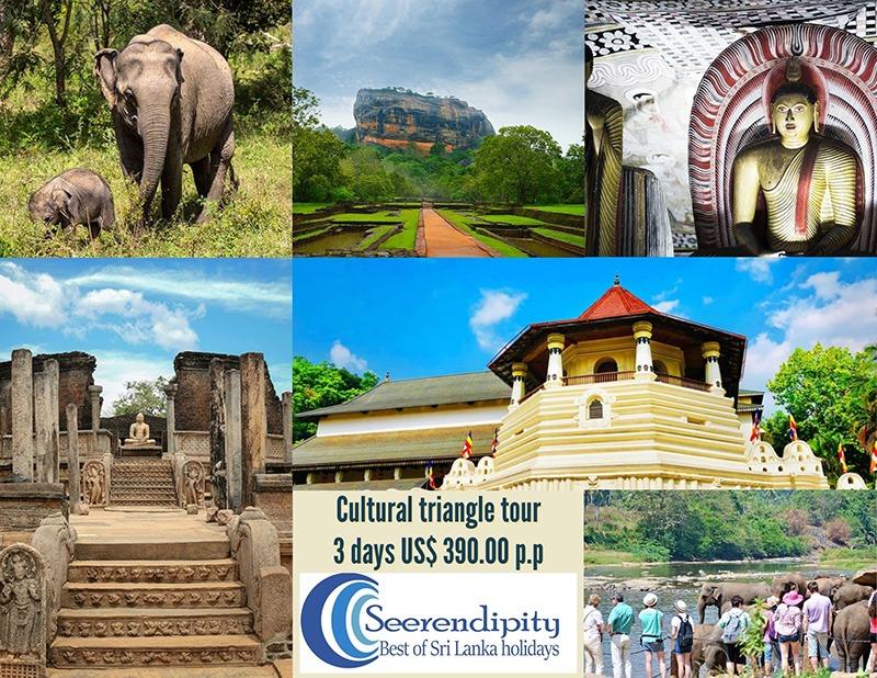 3 days Sri Lanka cultural triangle tour