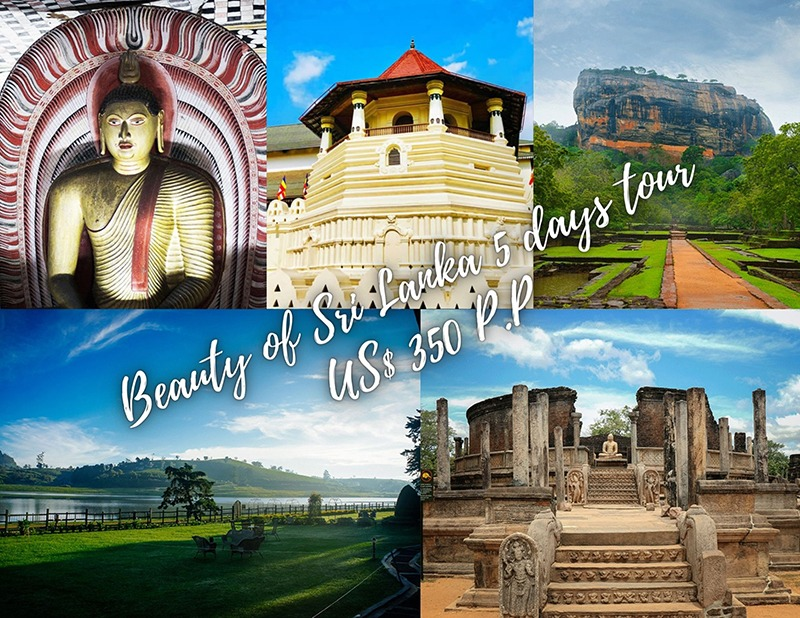 Places to visit in Sri Lanka in 3 days, How To Plan Your Memorable Sri Lanka Road Trip, sri lanka road trip, road trip sri lanka, roadtrip sri lanka, best road trip in sri lanka, sri lanka road trip itinerary, COLOMBO VACATION PACKAGES, train trips in Sri Lanka, best hiking places in Sri Lanka