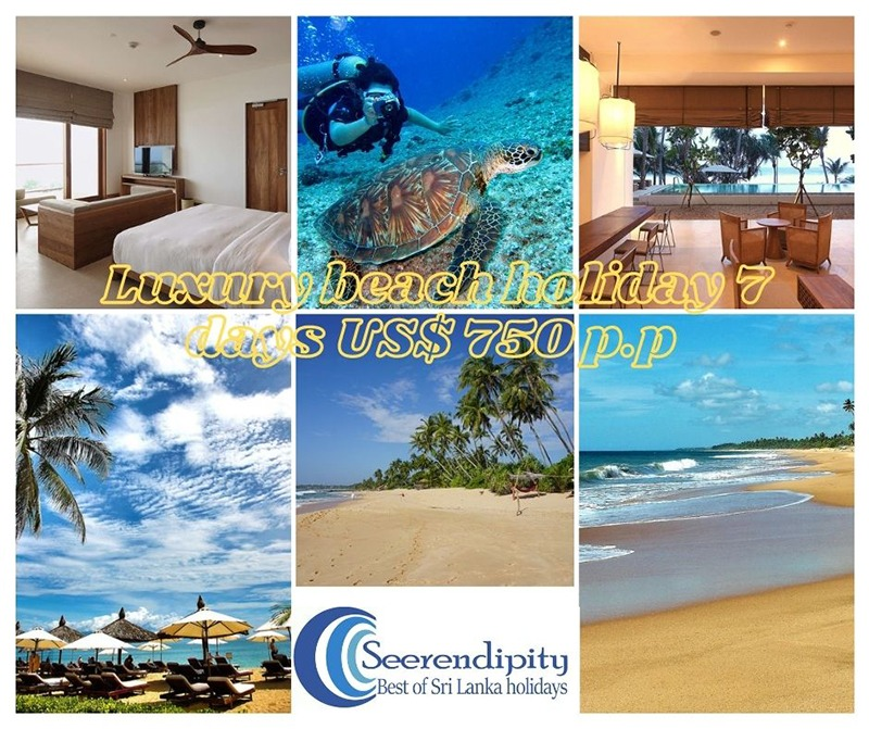 Hikkaduwa beach holiday package 7 days, Sri Lanka 7 days tour, Sri Lanka Boat Tours, Sri Lanka Boat Trips